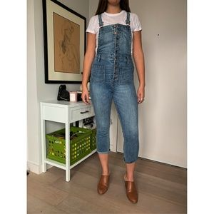 Madewell Button Front Overalls